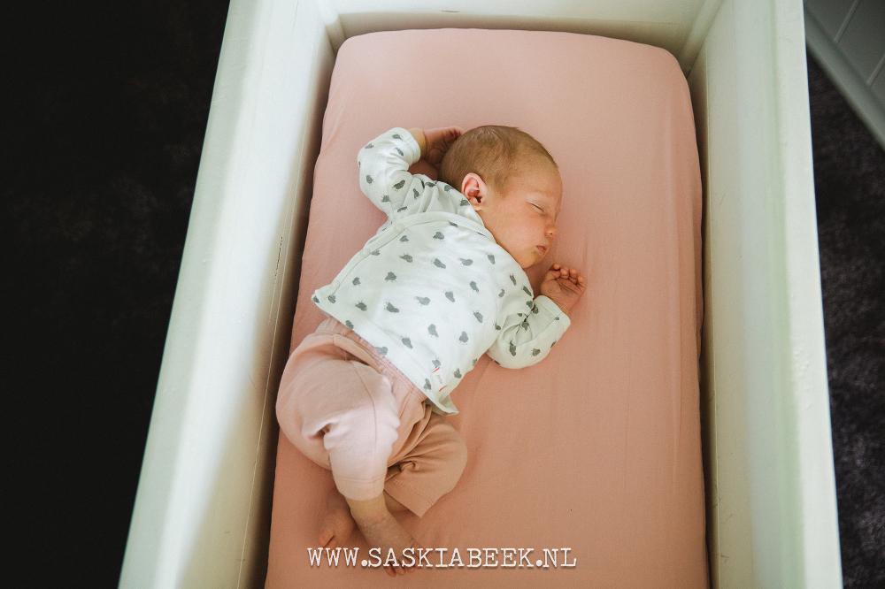 newbornfotografie Harderwijk, Ermelo, Garderen